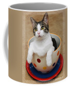 Cup O Tilly 1 Coffee Mug
