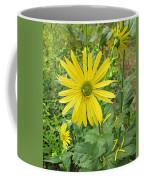 Cup Plant Blooms Coffee Mug