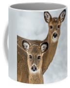 Curious Does Coffee Mug