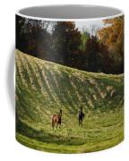 Curious Horses Coffee Mug