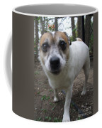 Curious Jack Coffee Mug