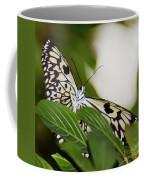 Curious Paper Kite Coffee Mug