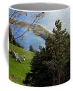 Curious Sheep In A Grassy Meadow Coffee Mug