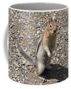 Curious Visitor Coffee Mug