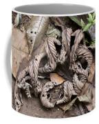 Curled Leaves Coffee Mug