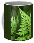 Curved Fern Leaf Coffee Mug