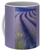 Curved Rows Coffee Mug