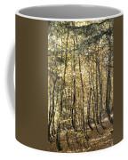 Curved Trunks Coffee Mug