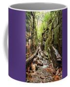 Cut Through The Flume Coffee Mug