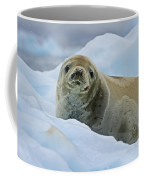Cute And Cuddly... Coffee Mug