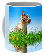 Cute Cat Outdoor Portait Coffee Mug