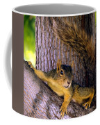 Cute Fuzzy Squirrel In Tree Near Garden Coffee Mug