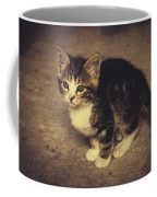Cute Kitten Coffee Mug