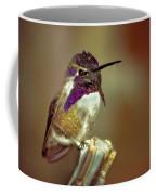 Cute Little Costa's Coffee Mug