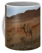 Cute Young Camel Desert Sinai Egypt Coffee Mug