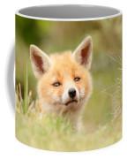 Cutie Face _red Fox Kit Coffee Mug