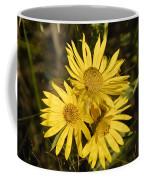 Cutleaf Daisy Coffee Mug