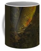 Cuttbow Coffee Mug