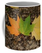 Cycle Coffee Mug
