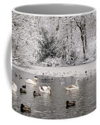 Cygnets In Winter Coffee Mug