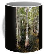 Cypres Swamp-1 Coffee Mug