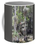 Cypress Airplant Display Coffee Mug
