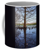 Cypress Reflections Coffee Mug