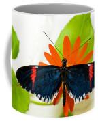 Cythera Butterfly Coffee Mug