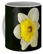 Daffodil 2014 Coffee Mug