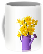 Daffodil Display Coffee Mug by Amanda Elwell