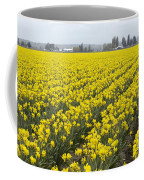 Daffodil Field Coffee Mug