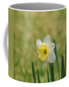 Daffodil Flower Coffee Mug