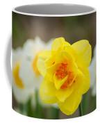 Daffodil Standout Coffee Mug