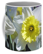 Daffodil Sunshine Coffee Mug