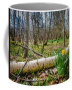Daffodils And Birch Coffee Mug