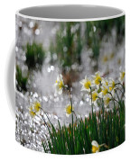 Daffodils On The Shore Coffee Mug