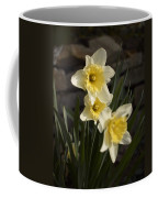 Daffs Coffee Mug