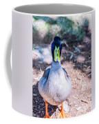 Daffy Duck Coffee Mug