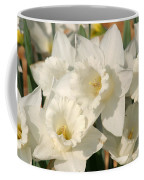 Dafodils162 Coffee Mug
