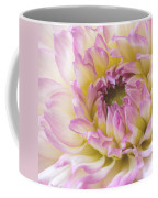 Dahlia Delight Square  Coffee Mug
