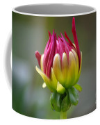 Dahlia Flower Bud Coffee Mug