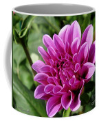 Dahlia Named Blue Bell Coffee Mug