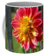 Dahlia Named Brian's Sun Coffee Mug