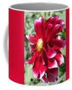 Dahlia Named Darkarin Coffee Mug