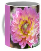 Dahlia Speak To Me In Pink Coffee Mug