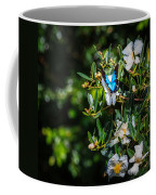 Daintree Monarch Butterfly Coffee Mug