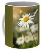 Daisies ... Again - Original Coffee Mug