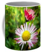 Daisies In Januray Coffee Mug