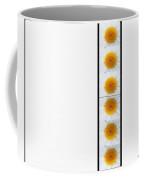 Daisies On White Coffee Mug