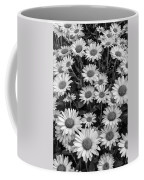 Daisy Cluster Vermont Flowers In Black And White Coffee Mug